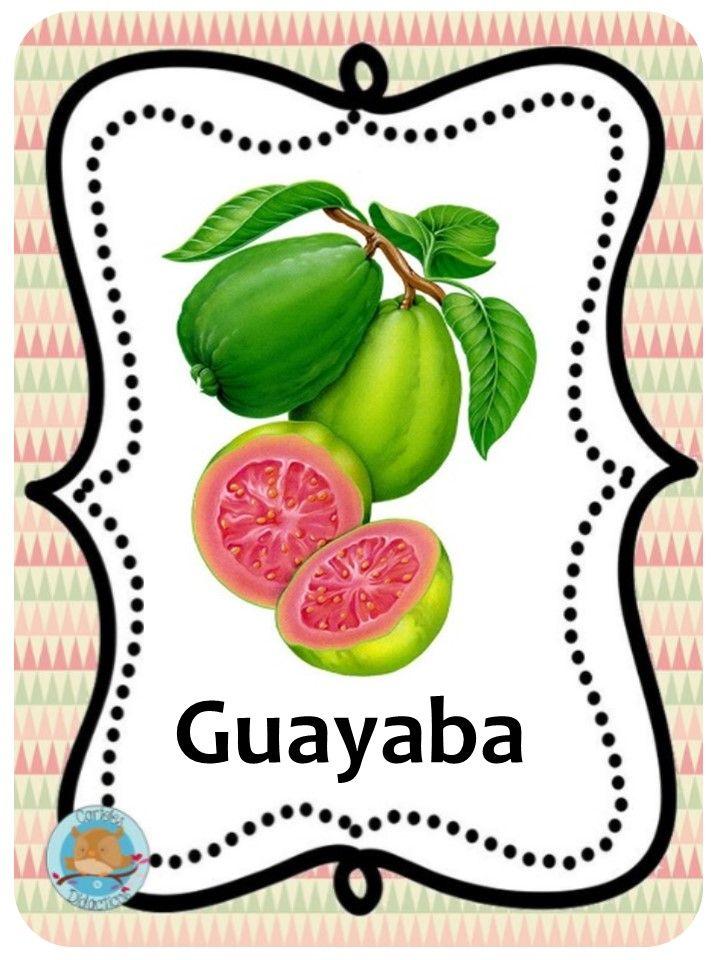 Frutas Y Hortalizas Venezolanas Guayaba Alimentos Para