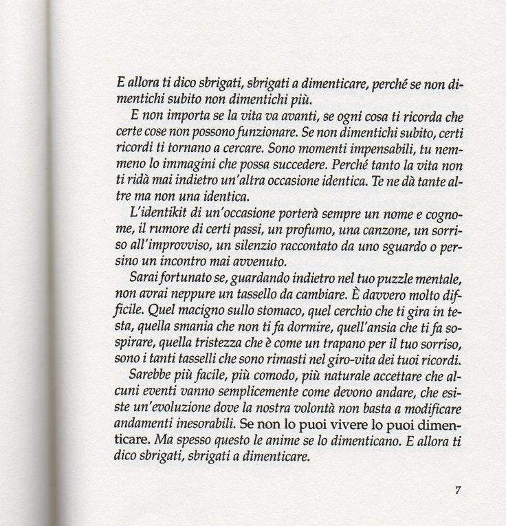 Massimo Bisotti, Un anno per un giorno.