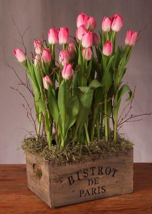 Decoración con tulipanes