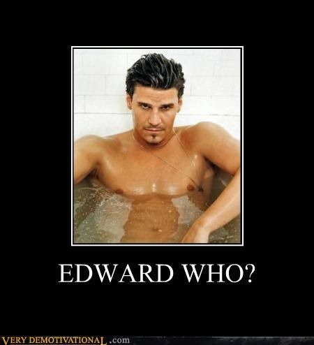Buffy fans...can I get a witness - EDWARD WHO?: Bones, Fans, Hot Vampires, Edward Cullen, Angel Baby, Dr. Who, Vampires Love, The Originals, David Boreanaz