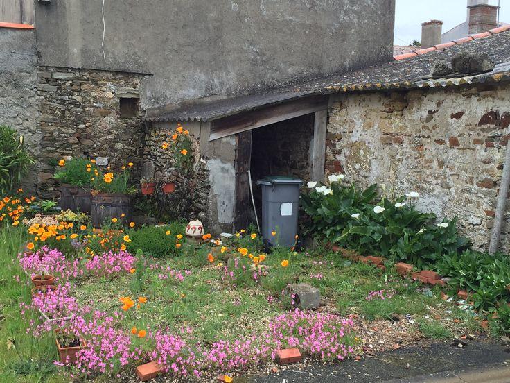 Quaint wild French garden