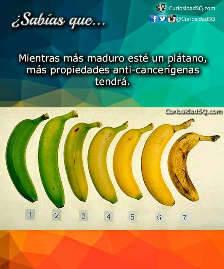 ¿Sabías que?: Mientras más maduro esté un plátano, más propiedades anti-cancerígenas tendrá.