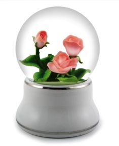 Three Pink Roses in a musical water globe