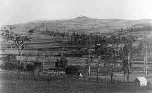 Panoramic view of Marburg district from Woodlands, Marburg, Ipswich, 1907
