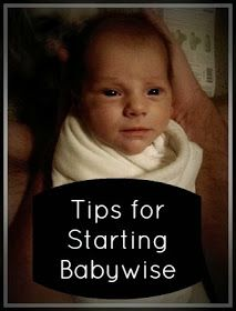 The Journey of Parenthood...: How to Start Babywise!