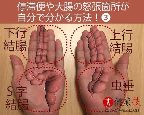 停滞便の箇所が自分で分かる方法3健康技