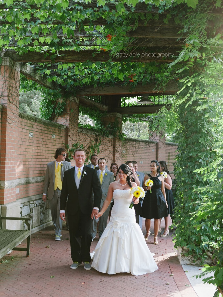 asian wedding photography east midlands%0A Image detail for Indianpolis Zoo Wedding  Sarah and Andrew u    s Black and  Yellow wedding