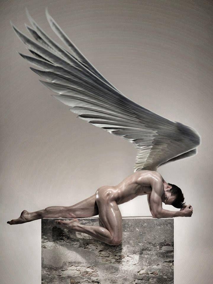 Seek job with Angels