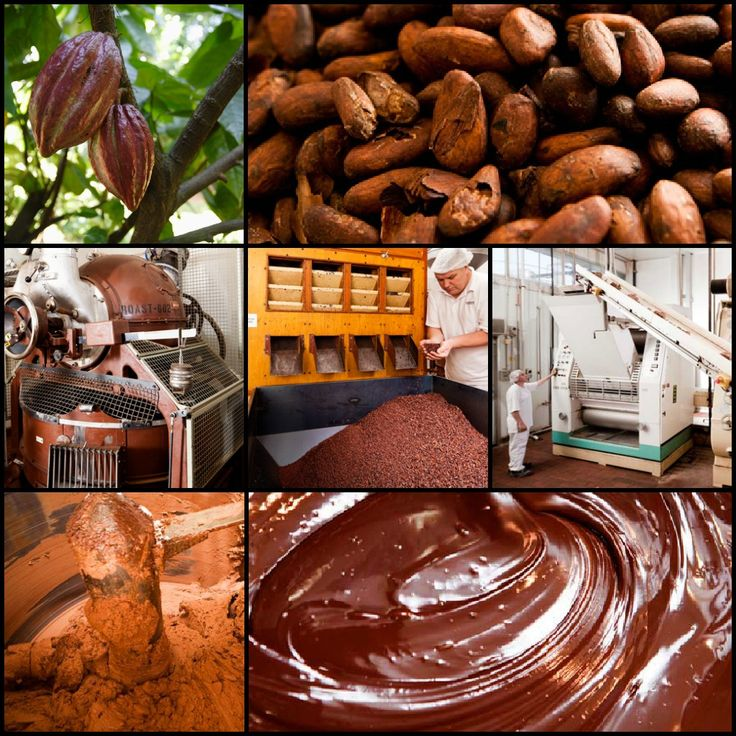 We make chocolate from the cocoa bean #haighs #haighschocolates #Australia #familyowned #chocolate