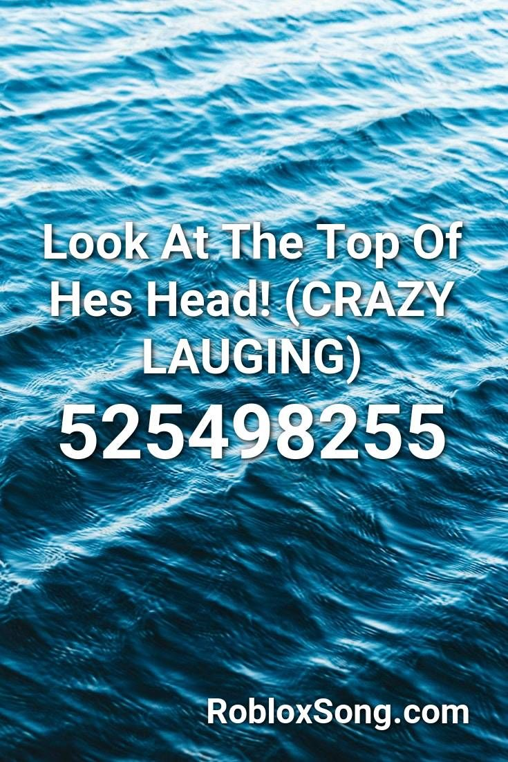 Look At The Top Of Hes Head Crazy Lauging Roblox Id Roblox