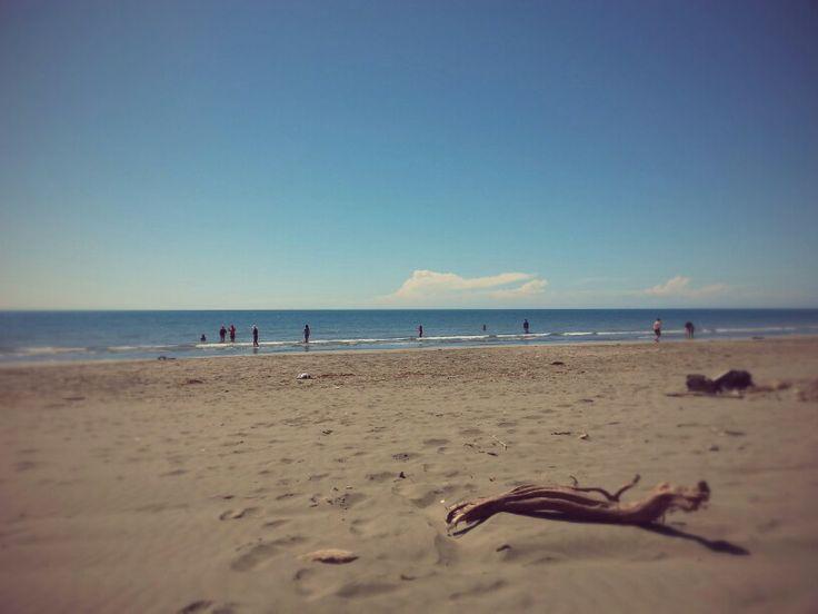 Waikanae Beach,  NZ