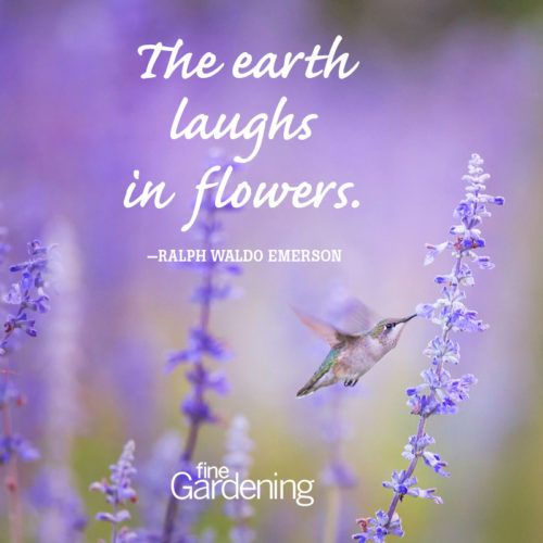 Ten of the Best Spring Quotes Ten of the best spring time quotes! -  Quotes about flowers and gardening -  From Fine <a href=