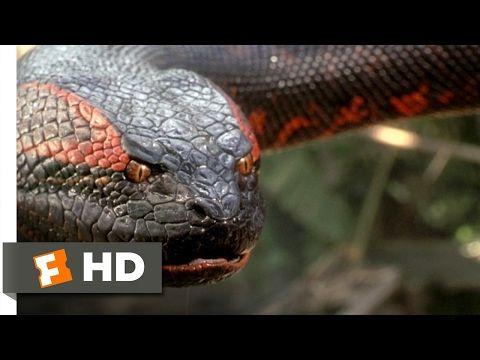 Anaconda 1997 English Movie _ Jon Voight, Jennifer Lopez, Eric Stoltz. - YouTube