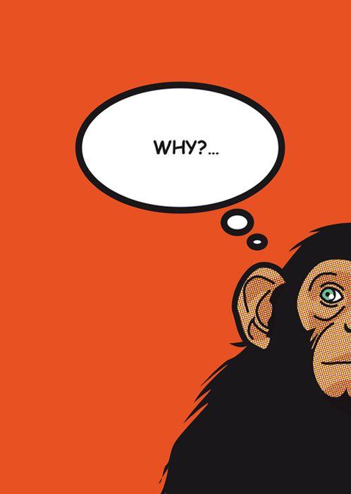 Hay días que siempre me pregunto lo mismo… Why? Encontrado en septagonstudios.tumblr.com Recuerda tú te encargas de la #creatividad, nosotros de la #impresion.  www.bramona.com  www.bramona.com/wordpress. (#ideas originales para#personalizar tu día a día…)