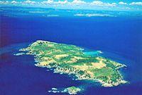 Discovery Tiritiri Matangi Island, see rare birds and wildlife 360 DISCOVERY CRUISES