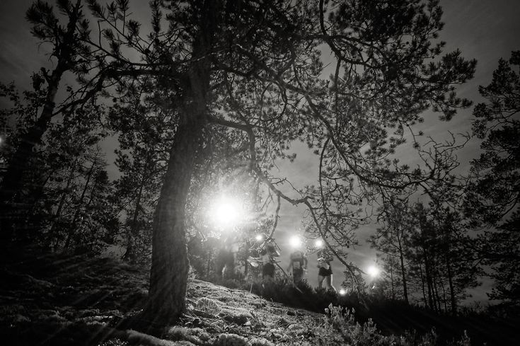 Night orienteering - click for more on my website.