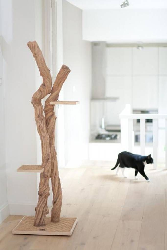 Beautiful and design cat tree made with liana wood arbre - Fabriquer une niche pour chat en bois ...