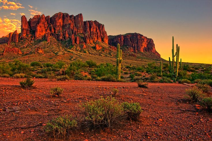 22 Reasons Why You Should Never Visit Arizona – Gossip News Line