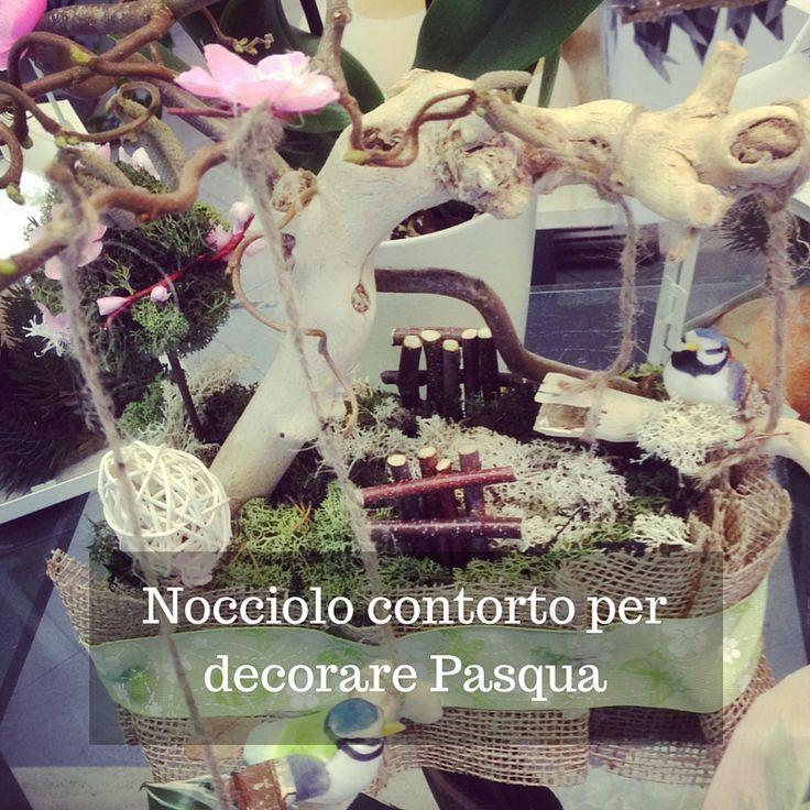 """Grazie alla sua """"contorta"""" conformazione si presta per la creazione di numerose composizioni floreali stilizzate, bastano pochi fiori o decorazioni per far viaggiare la fantasia e la creatività."""