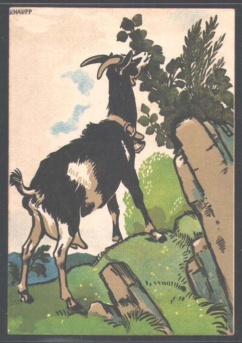 Vintage illustration  #goatvet collects art which feature goats