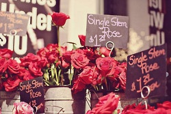 red roses: Single Rose, Bookmarks, Day Outfits, Funny Pics, Red Flowers, Flowers Power, Chalkboards Signs, Red Rose, Flowers Shops
