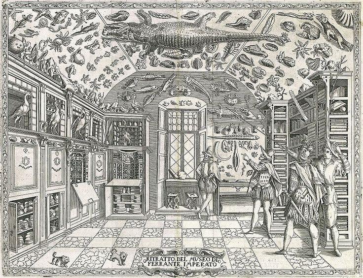 Los cuartos de las Maravillas o Gabinete de las curiosidades (también conocidos como Wunderkammern, Wonder Chambers o Kunstkammer) proliferaron en la época de las grandes exploraciones siendo los antecesores directos de los museos tanto de historia natural como de arte. El 'Cuarto de las Maravillas' visionado por Kircher en el colegio romano y la colección esotérica de Rodolfo ii en su castillo de Praga se podrían situar entre estas iniciativas proto 'enciclopedistas'.