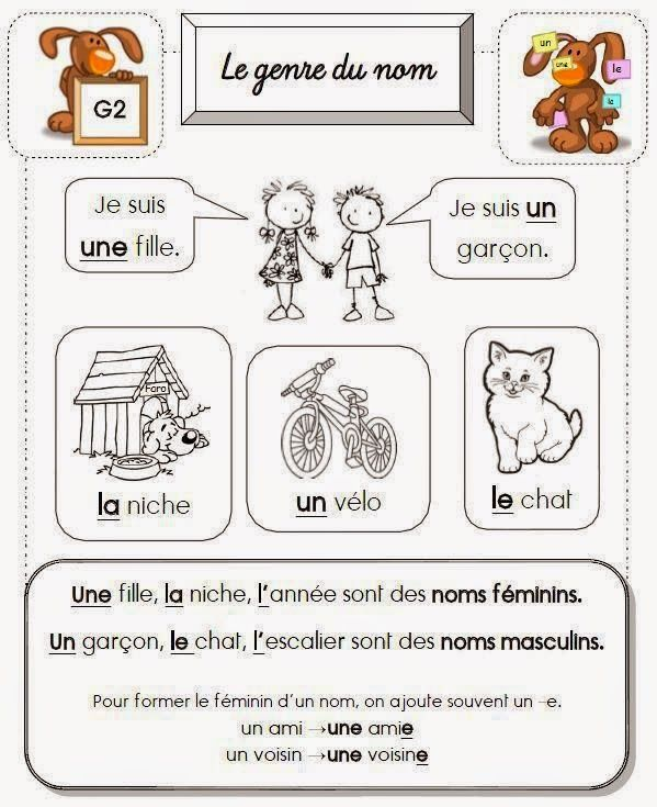 Grammaire : le genre du nom, support explicatif pour leçon | Activités