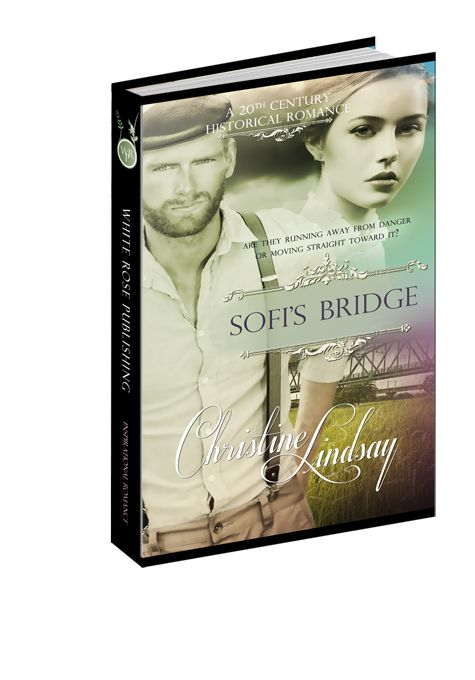 Get your Release Day SALE half price only $2.50 for Ebook versions of Sofi's Bridge from publisher's site