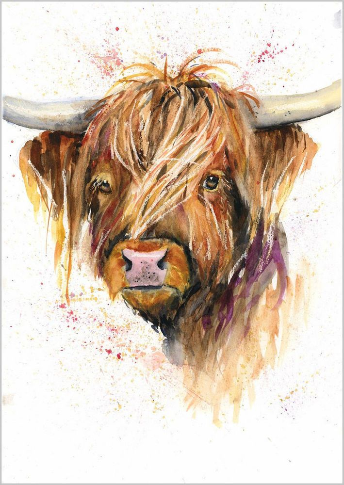 HELEN ROSE Limited Print of my HIGHLAND COW original watercolour painting 162