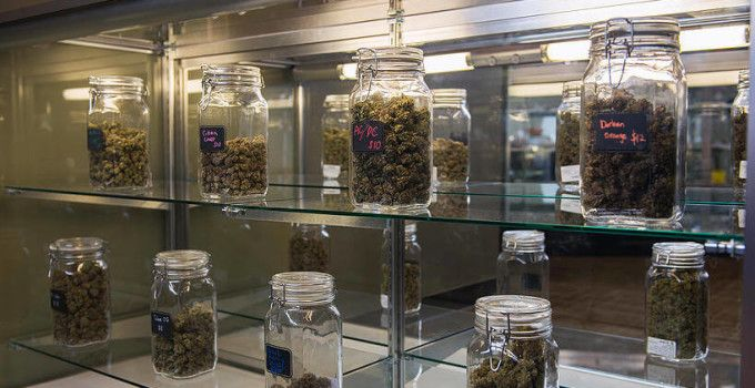 How to Start a Medical Marijuana Dispensary | California Medical Marijuana Information