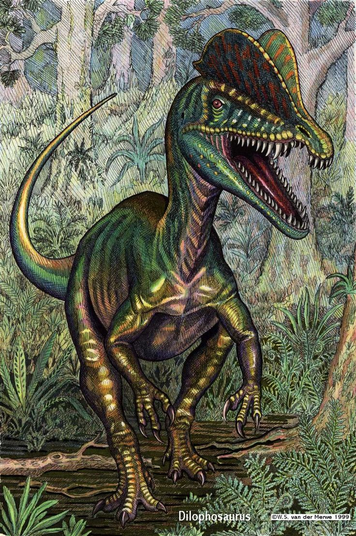 dilophosaurus | Dilophosaurus by ~ WillemSvdMerwe ...