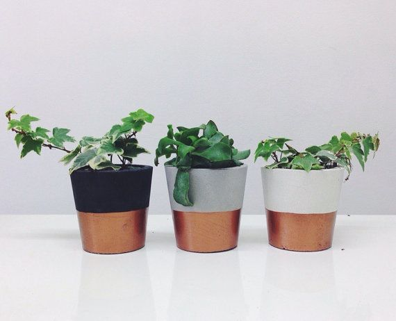 Copper dipped small cement pots / planters or candle holders for cactus, succulents or candles in black, white or grey porcelain concrete
