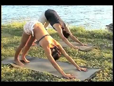 Yoga para Principiantes - español - MUY BUENO! - YouTube