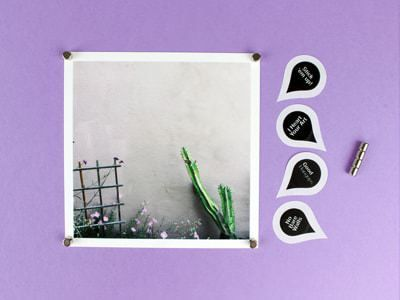 Get your Instagrams off your phone and onto lush matte paper. Your 25 best shots are display ready with a crisp white border and paper thick enough to prop or pin anywhere.FREE #freeprints #freephotos #freephotoprints #affiliate #25squareprints #parabopress #prints #photoprints