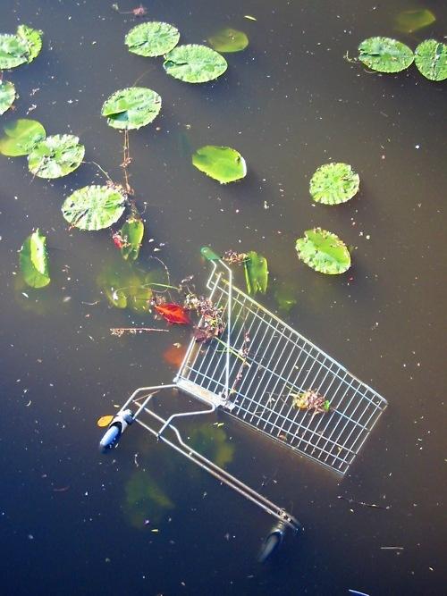 """""""Le paradis est la natation nue dans un étang avec des grenouilles et le lillies""""    A skinny-dipping trolley feels content in Rennes, France.    Love the Trolley Kingdom"""