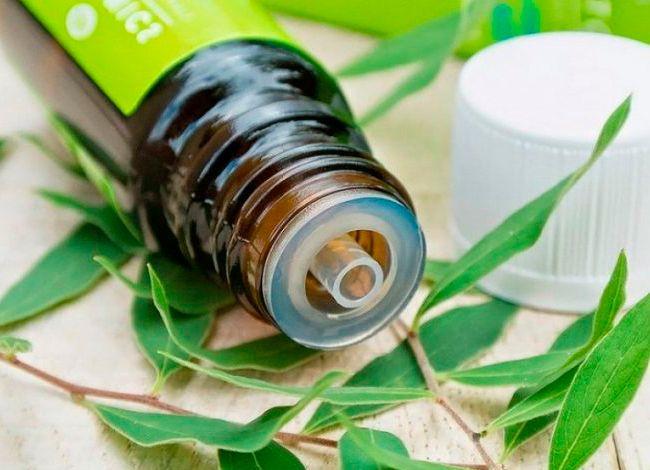 Масло чайного дерева имеет широкий спектр действия, оно является сильнейшим антисептиком, поскольку обладает противовирусными, антибактериальными и противогрибковыми свойствами. По этой причине его часто используют как натуральное средство для...