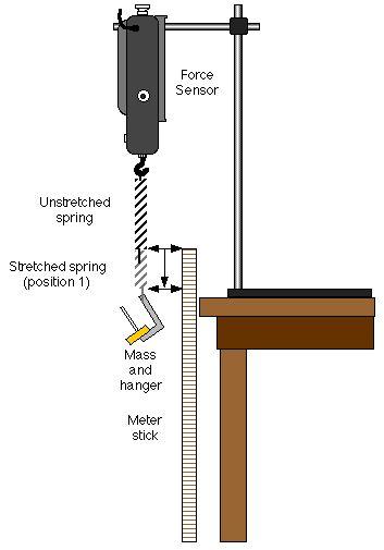 lab report investigating a simple pendulum
