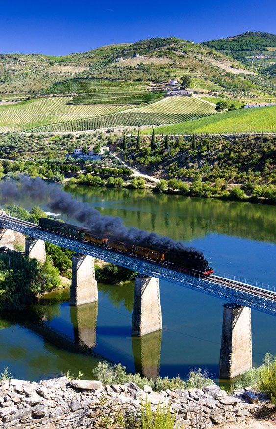 The train up the Douro River Valley. This is the only place in the world where port wine grapes grow, Portugal.