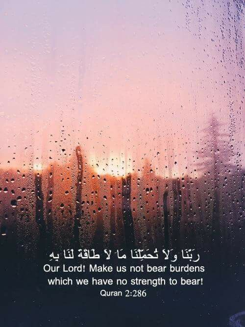 35 best ArabicQuotes & Typography images on Pinterest | Dating ...