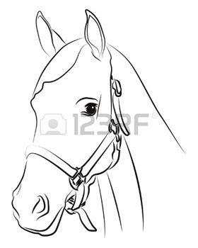 wit+paard%3A+Paard+hoofd+silhouet+op+wit+wordt+ge%C3%AFsoleerd