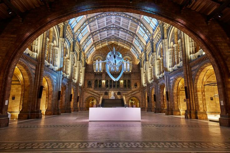 London'sNatural History Museum