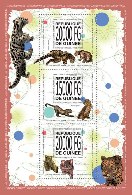 GU 13512 aCats of the word, (Neofelis nebulosa, Panthera pardus, Priomailurus rubiginosus).