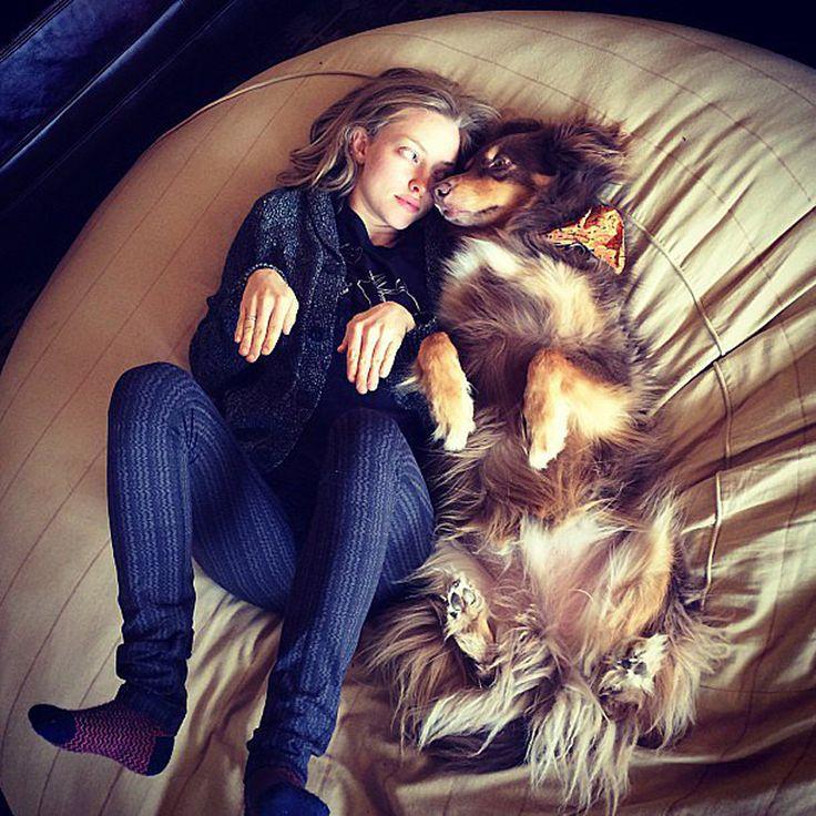 Amanda Seyfried #amandaseyfried #WOmansbestfriend #CelebsAndTheirPets #gusandkenzo