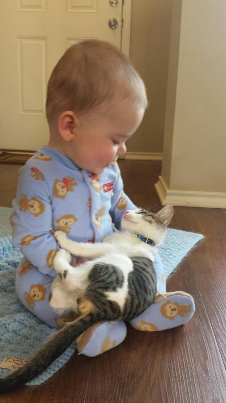 L'amitié entre un jeune enfant et son animal n'a de limite que la disparition de l'animal...la plupart du temps...ce sera une catastrophe pour celui qui restera seul avec l'image de son grand ami imprimée dans sa mémoire pour toujours.
