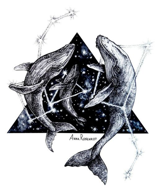 #whale #whales #space #night #galaxy # constellation #art #graphic_art #drawing #watercolor #geometry