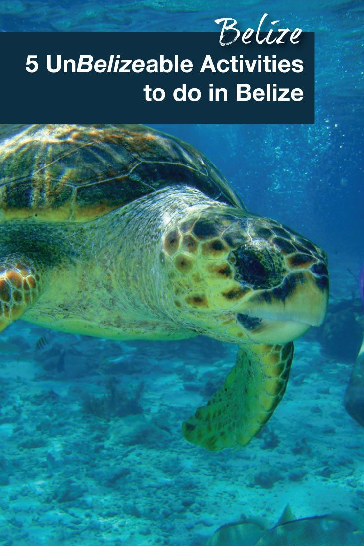 Belize is a great destination with many opportunities for an adventure. Diving the Belize barrier reef is one of our must do activities in Belize.