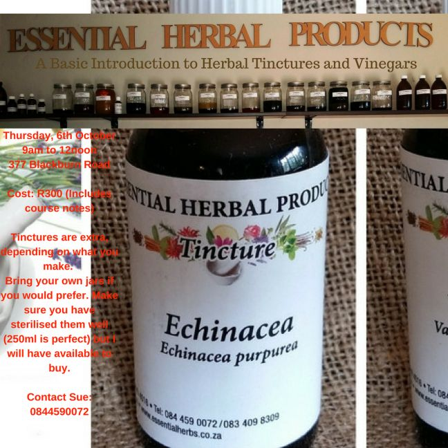 Essential Herbal Products | Keeping you empowered and healthy