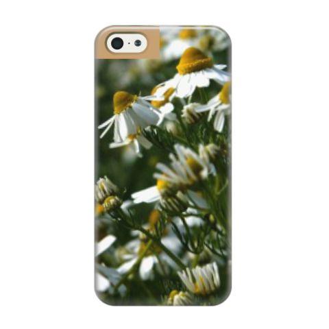 Чехол для iPhone 5/5s Ромашки - милые цветы (от 950 рублей). Цветы, весна. Крым, Феодосия, Коктебель. Доставка чехлов по России и всему миру
