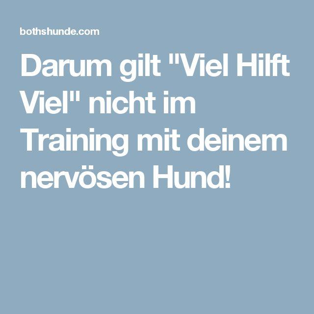 """Darum gilt """"Viel Hilft Viel"""" nicht im Training mit deinem nervösen Hund!"""