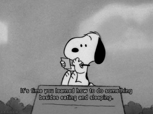 : Words Of Wisdom, Colleges Life, Quote, Charli Brown, Funny Stuff, Snoopy, Photo, It My Life, Peanut Gang